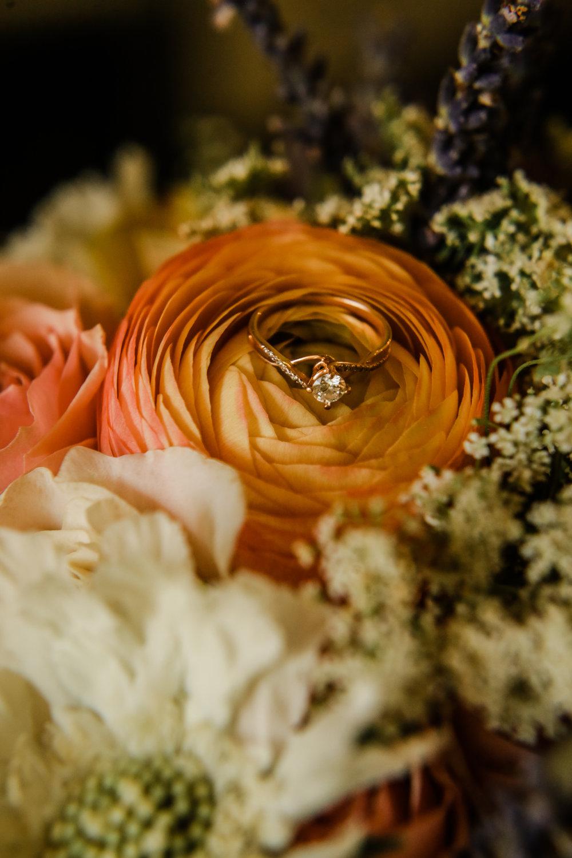 Camp Fircom Wedding - Vancouver Wedding Photographer & Videographer - Sunshine Coast Wedding Photos - Sunshine Coast Wedding Photographer - Jennifer Picard Photography - IMG_2239.jpg