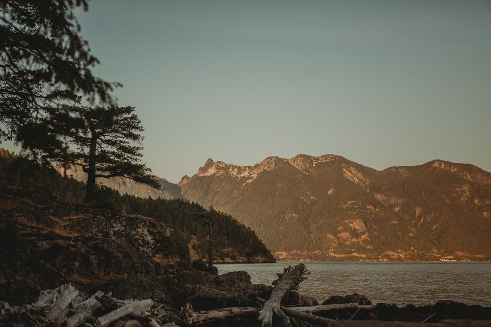Camp Fircom Wedding - Vancouver Wedding Photographer & Videographer - Sunshine Coast Wedding Photos - Sunshine Coast Wedding Photographer - Jennifer Picard Photography - IMG_1517.jpg