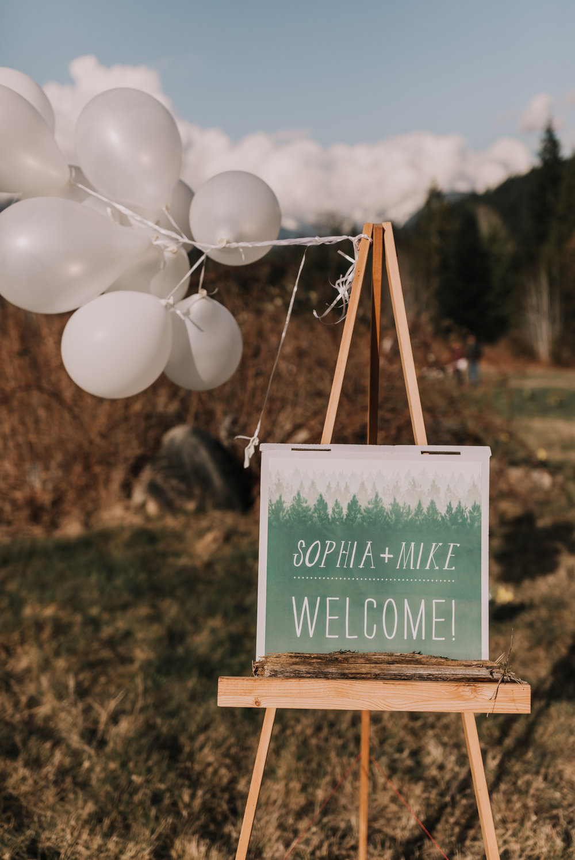 Sunshine Coast Wedding Photos - Mountain Wedding Photos - Sunshine Coast Wedding Photographer - Vancouver Wedding Photographer - Jennifer Picard232-1.JPG