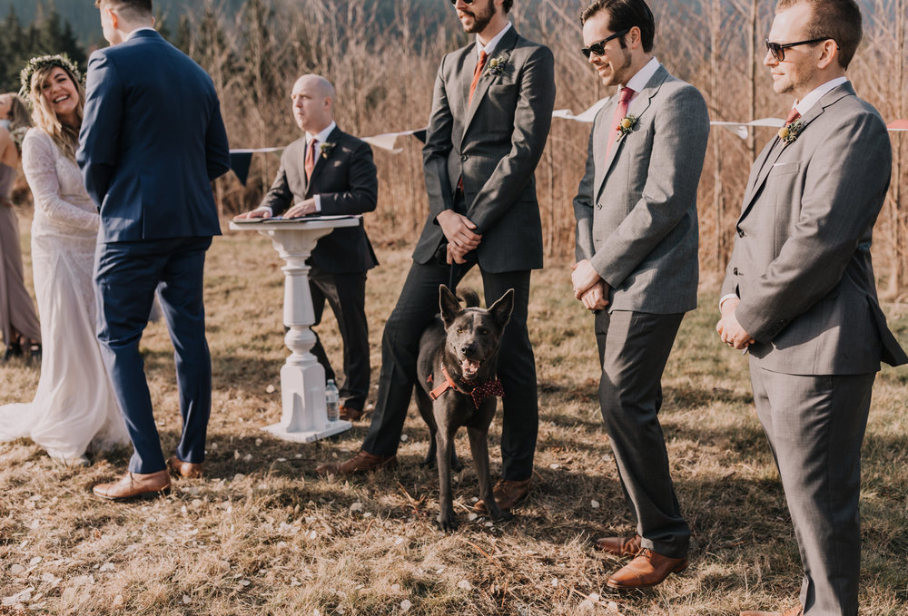 Sunshine Coast Wedding Photos - Mountain Wedding Photos - Sunshine Coast Wedding Photographer - Vancouver Wedding Photographer - Jennifer Picard242-1.JPG