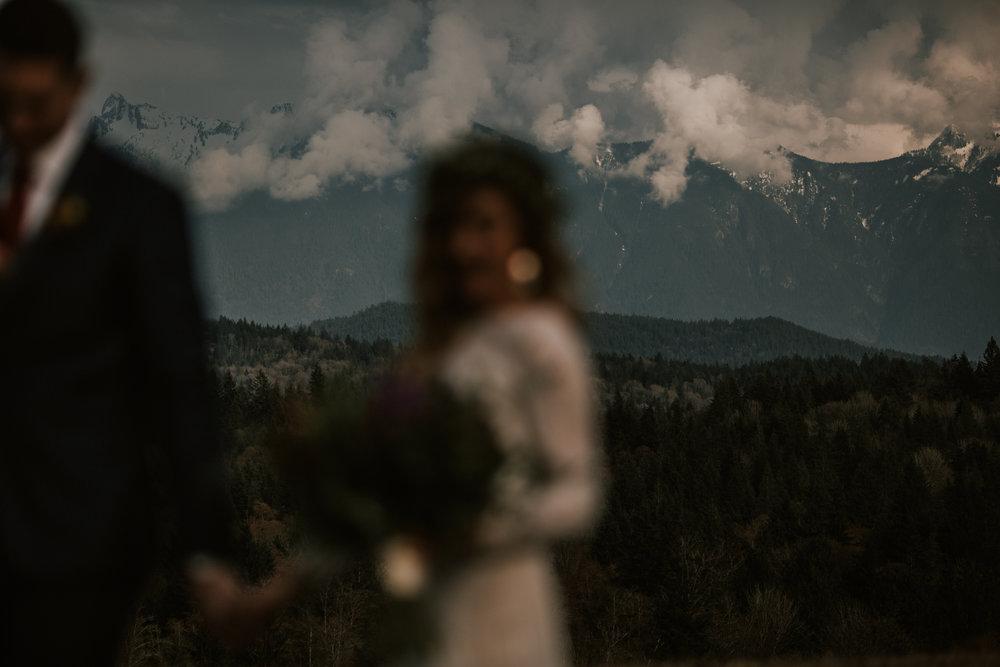 Sunshine Coast Wedding Photos - Mountain Wedding Photos - Sunshine Coast Wedding Photographer - Vancouver Wedding Photographer - Jennifer Picard368-1.JPG
