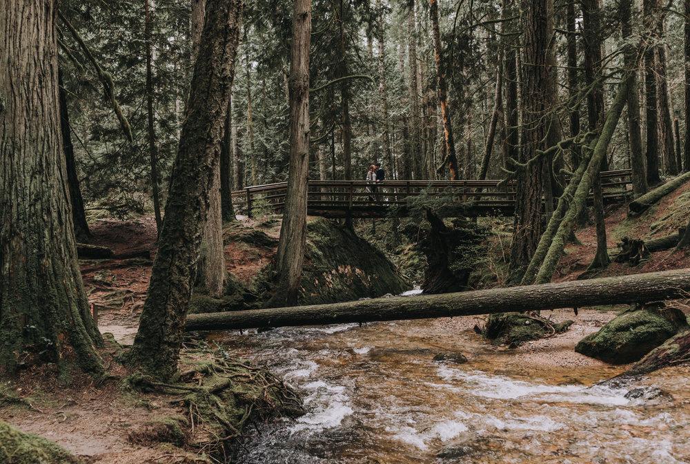 Forest Engagement Photos - Sunshine Coast BC Engagement Photos -  Sunshine Coast Wedding Photographer - Vancouver Wedding Photographer - Jennifer Picard408.JPG