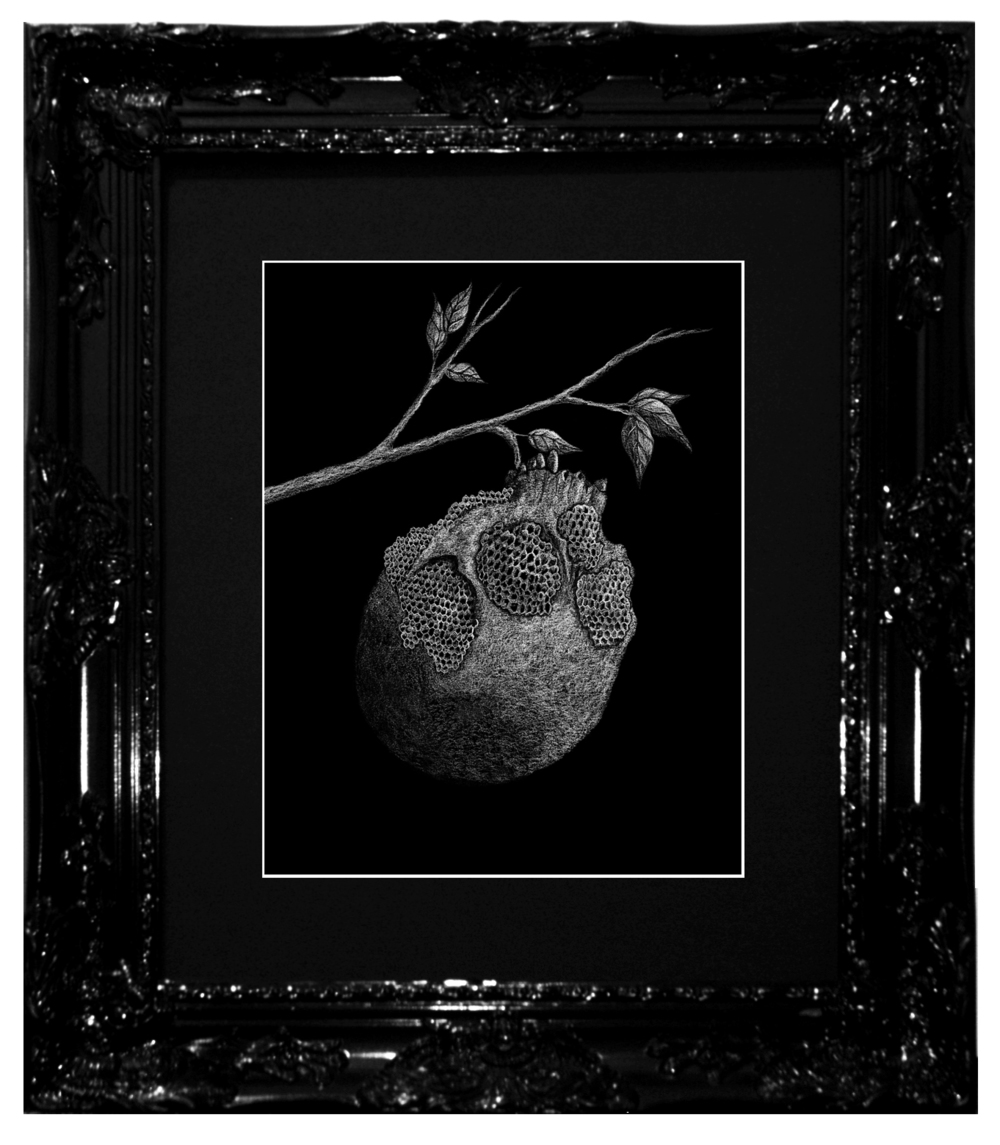 Dylan Garrett Smith Honey's Rot XVX framed.jpg