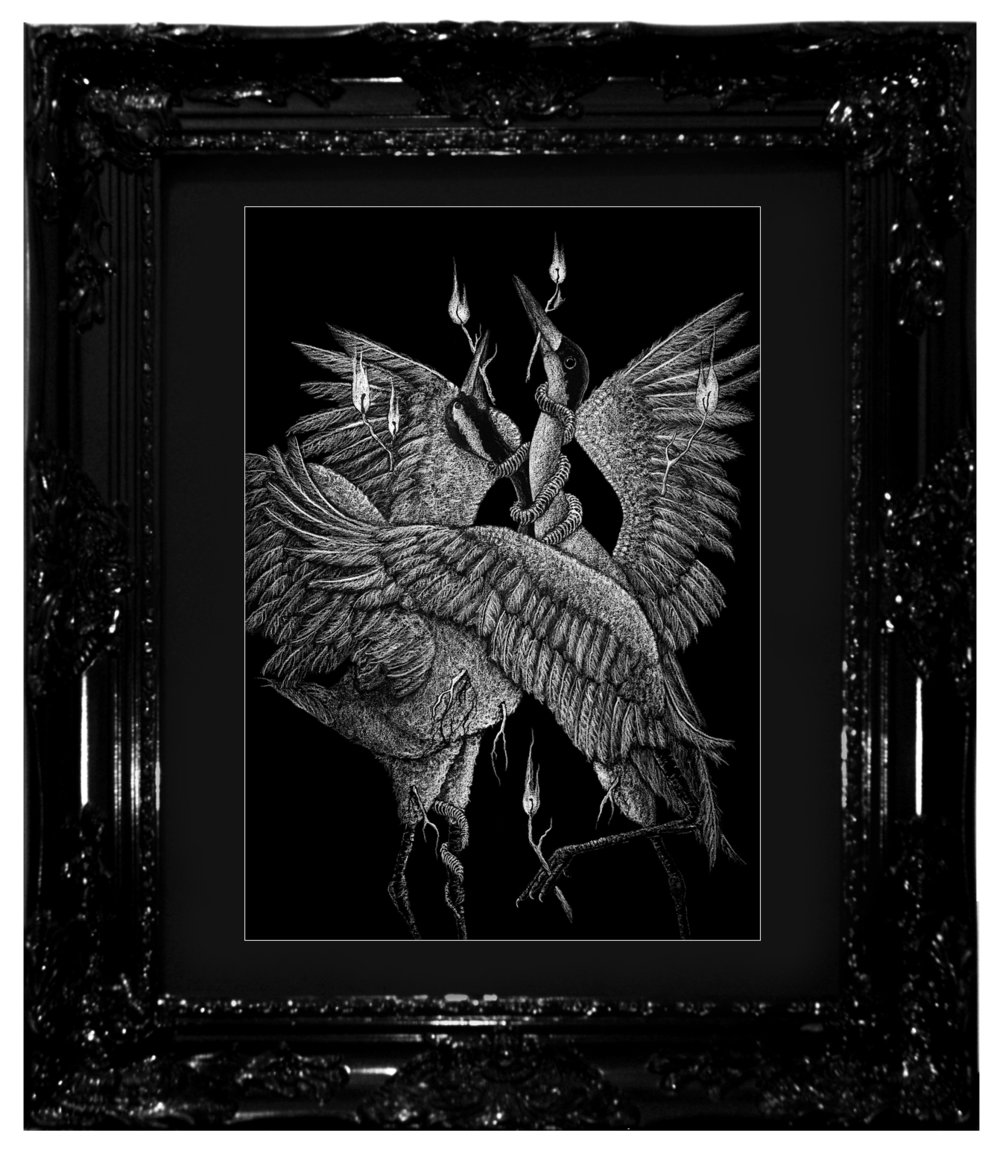 """The Binding Ritual"", 2017 Ashes, chalk-lead and ink on black cotton-rag paper 16x20"", 18x24"" framed Contact Last Rites Gallery for purchasing information"