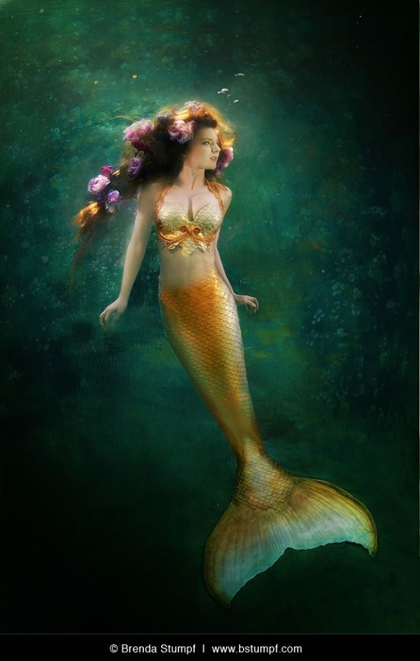 Virginia Gold Tail Mermaid - Brenda Stumpf Copyright.jpg