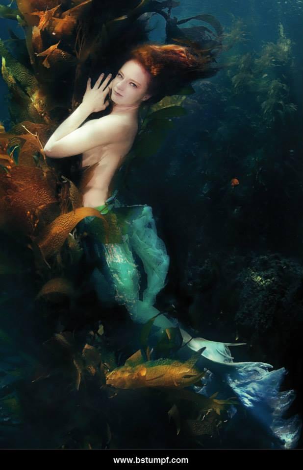 Brenda Stumpf Virginia Catalina Kelp Muse.jpg