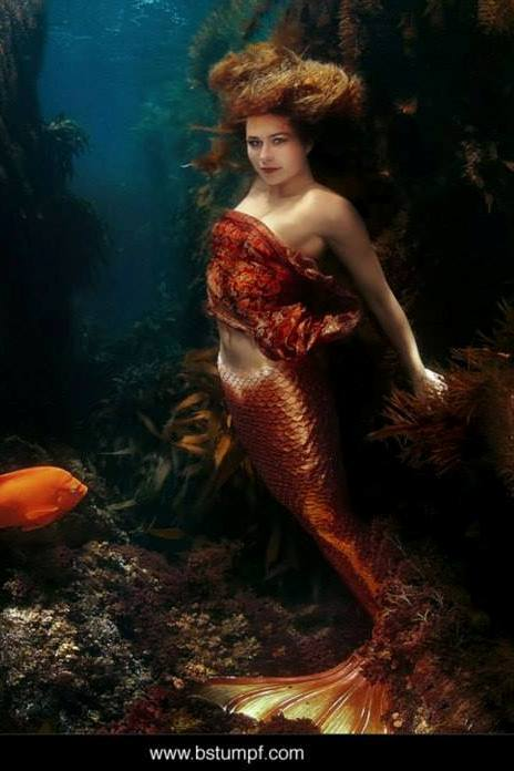 Sheroes Linnea Mermaid by Brenda Stumpf.jpg