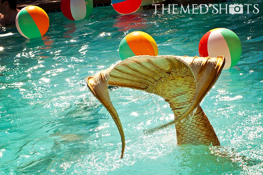 Gold Mermaid Tail Handstand in Pool.jpg
