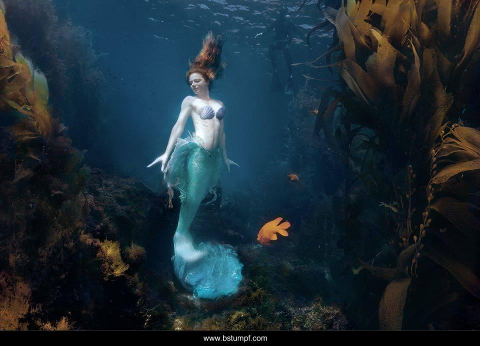 virginia brenda stumpf avalon casino mermaid web.jpg