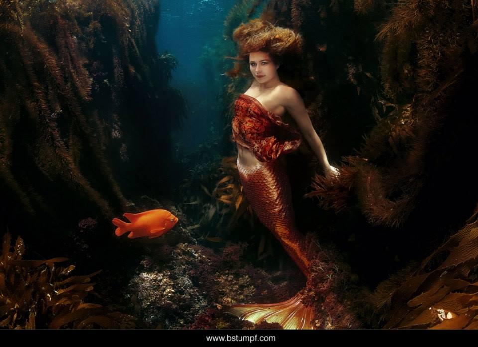 Brenda Stumpf Linnea Watermarked.jpg
