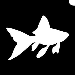 goldfish stencil.jpg
