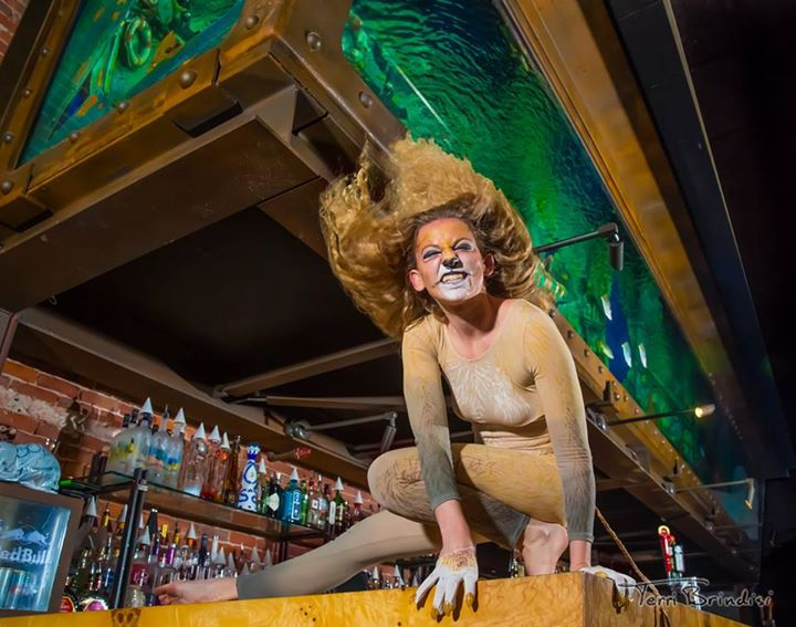 Rachel Smith Lion - Coastal Carnival - Dive Bar.jpg