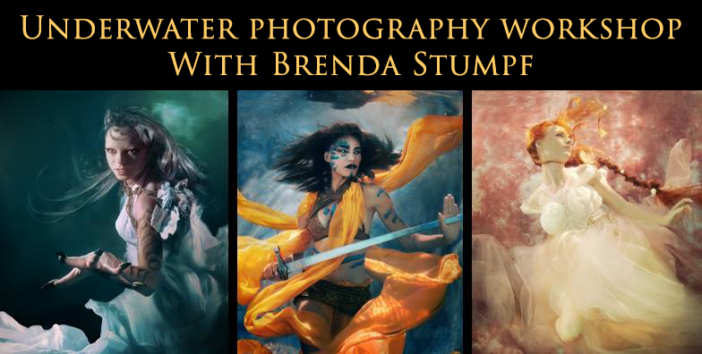 Brenda Stumpf Underwater Workshop Banner