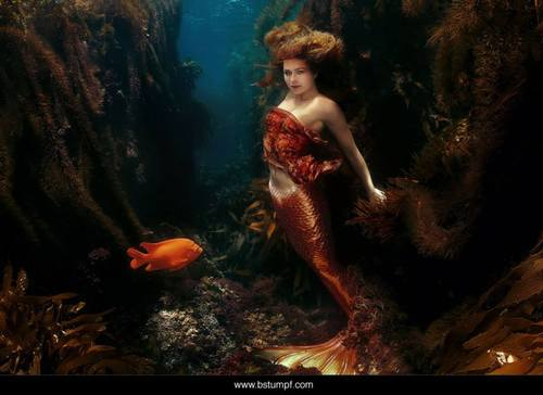 Sheroes+Linnea+Mermaid+by+Brenda+Stumpf.jpg