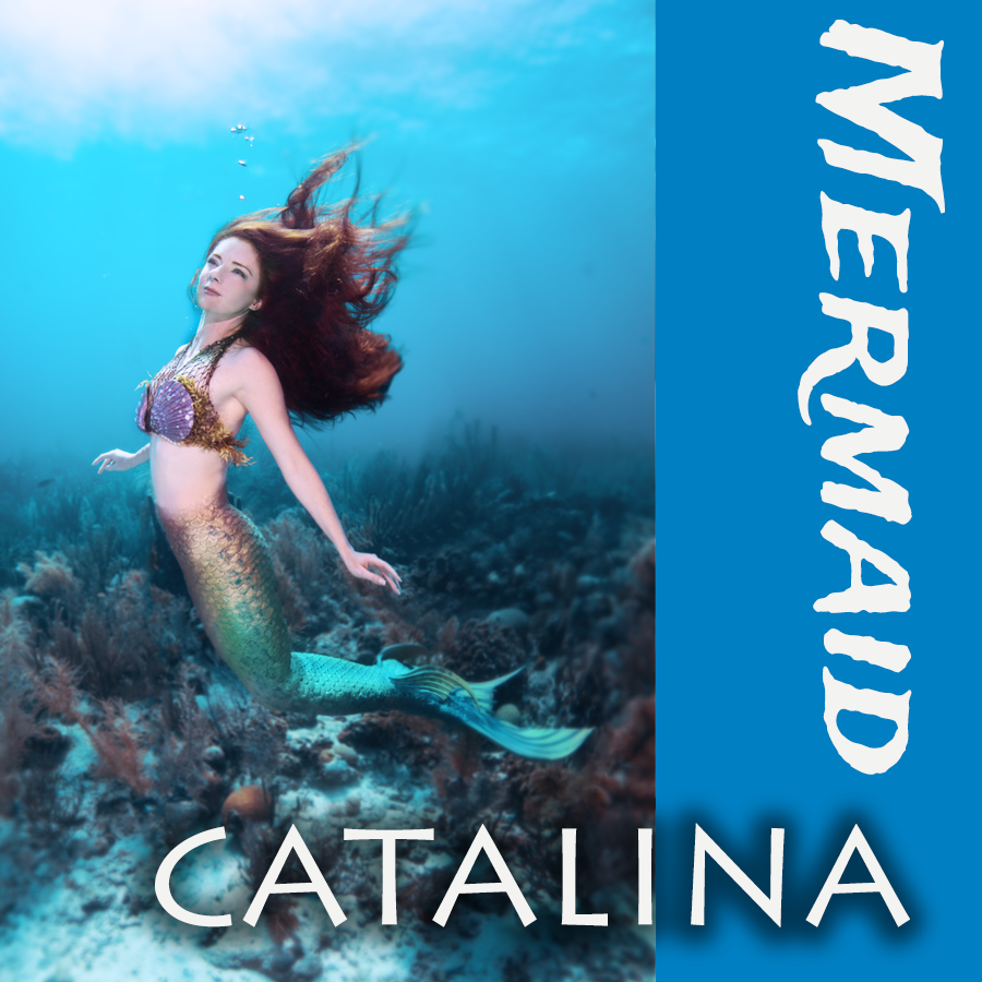 Catalina Mermaid Professional Mermaid Entertainment Los Angeles