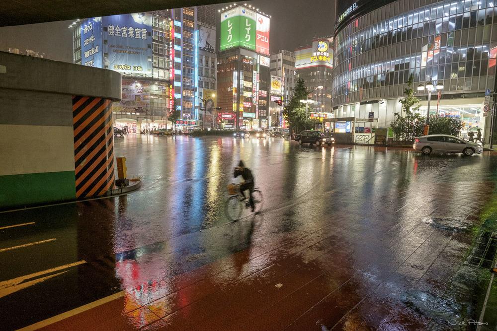 2016_website_japan-10.jpg