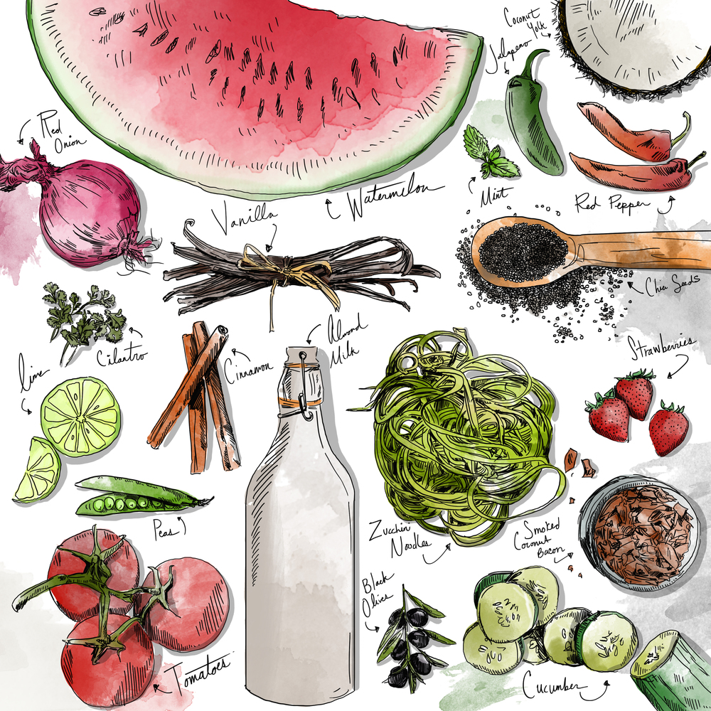 THE SPRING, Ingredient Illustration