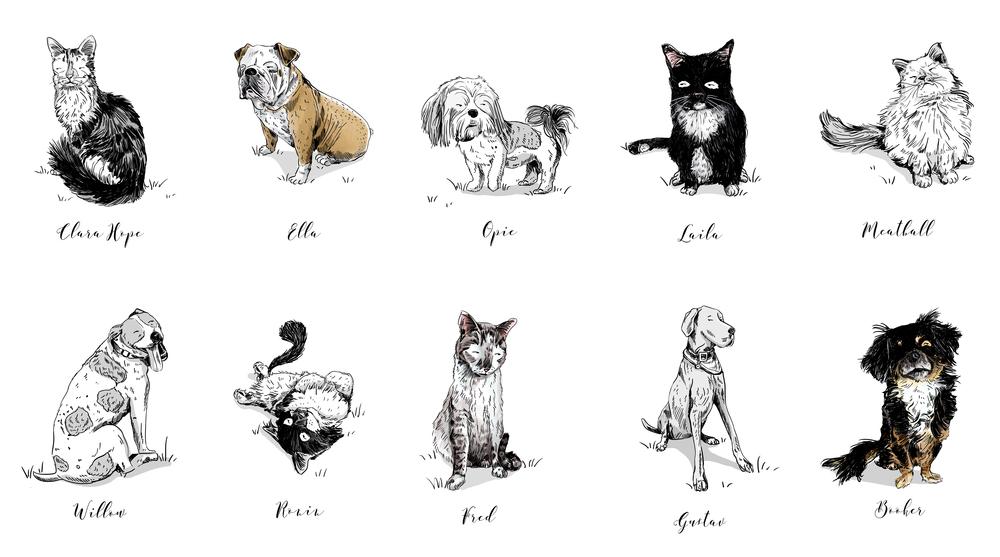 ANIMALS_ALL.jpg