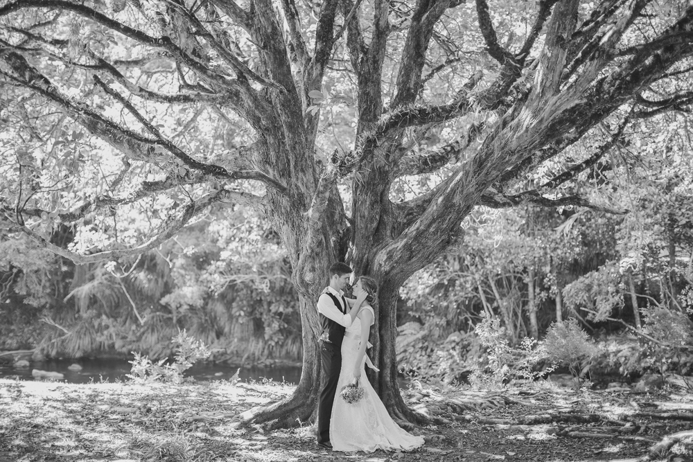 NZ wedding photographer 68.jpg