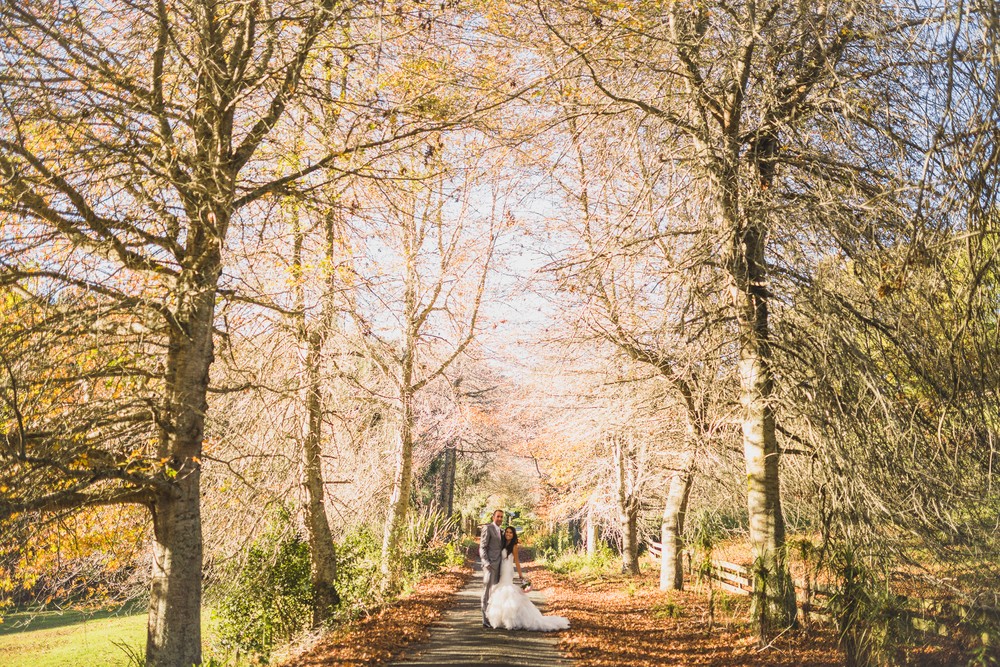 Auckland_Wedding_Photographer_forest.jpg
