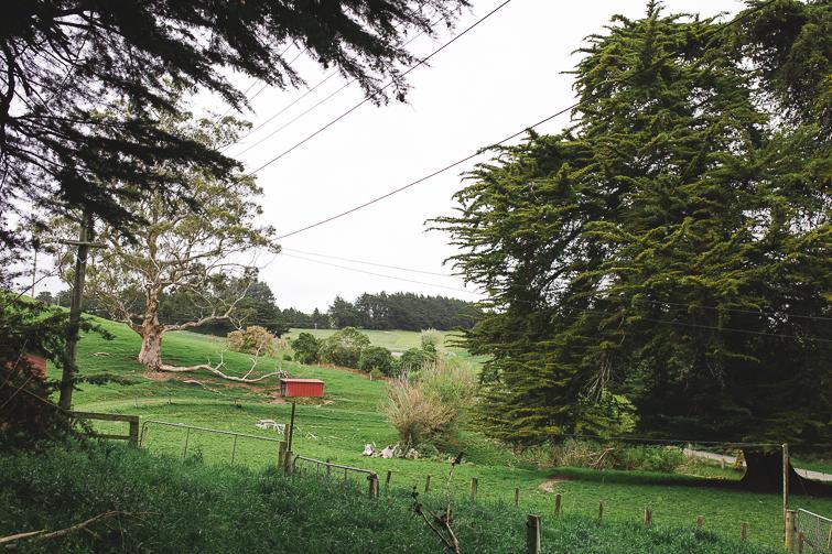 Christchurch wedding photographer 4549.jpg