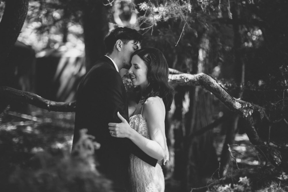 Wellington Wedding Photographer 3876.jpg