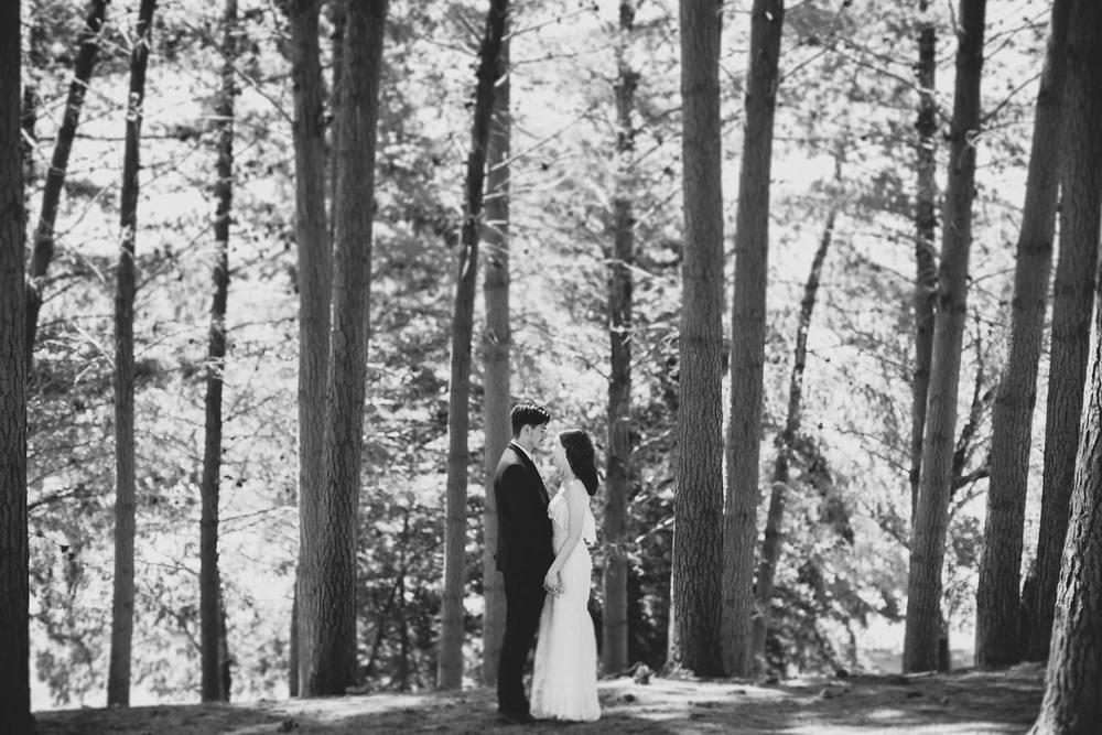 Wellington Wedding Photographer 3904.jpg