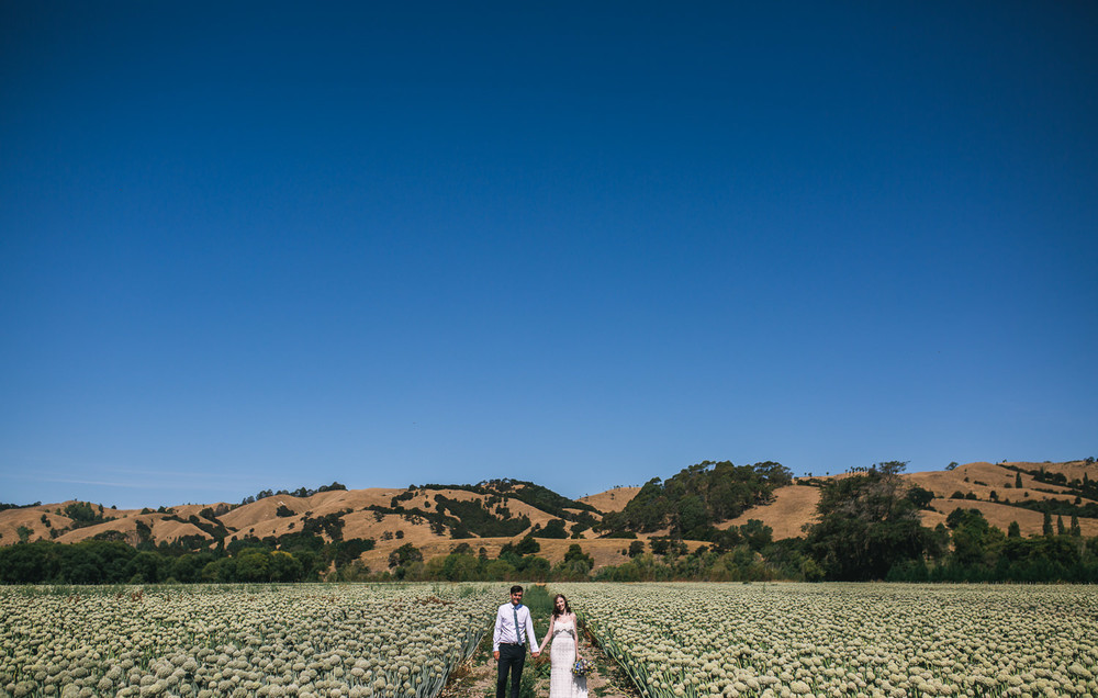 Wellington Wedding Photographer 4565.jpg