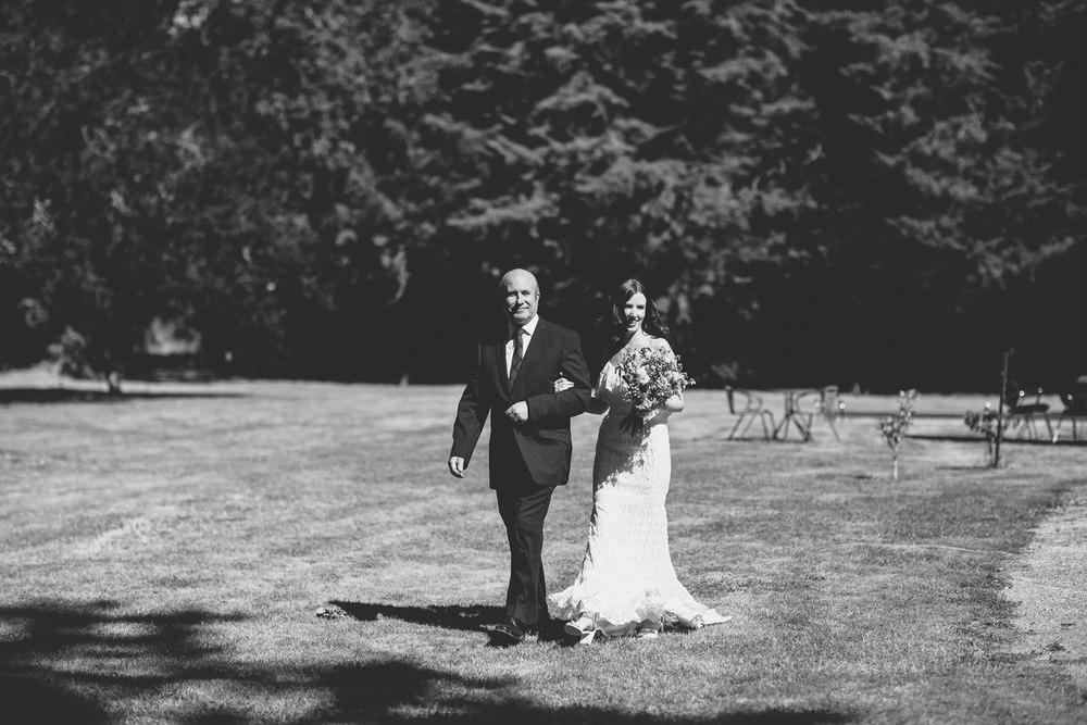 Wellington Wedding Photographer 1984.jpg