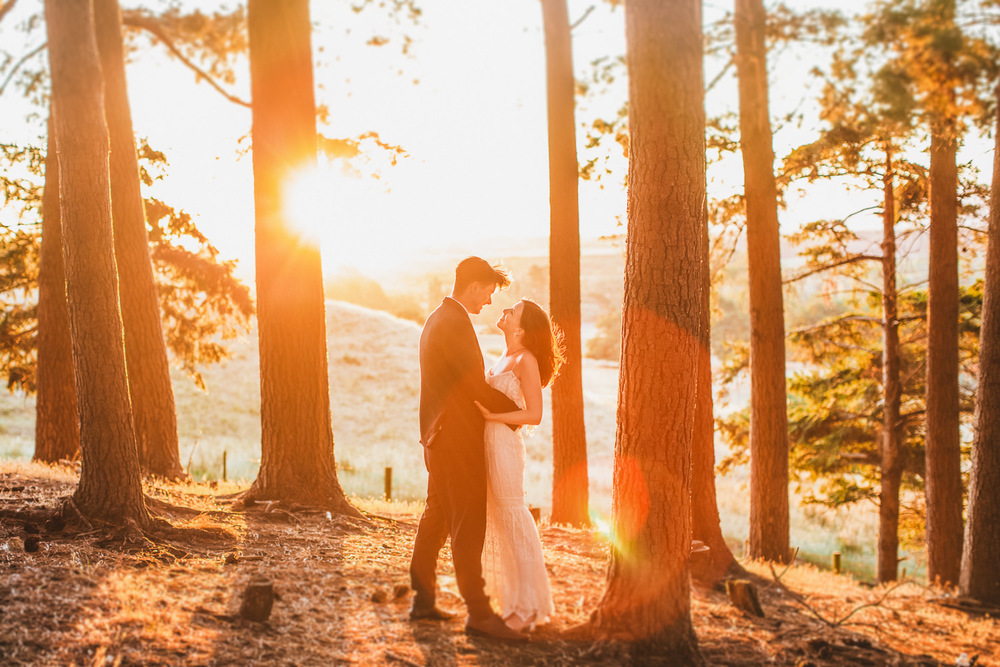 Wellington Wedding Photographer 2.jpg