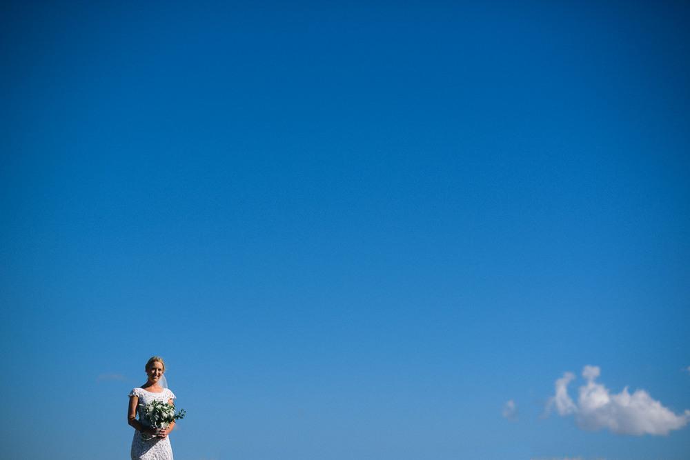 Napier Wedding Photographer 9221.jpg
