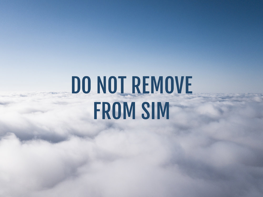 DO NOT REMOVE FROM SIM.jpg