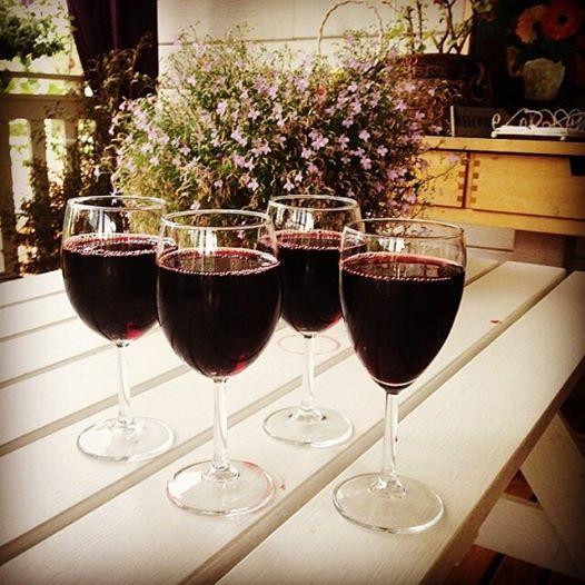 Неделя чилийских вин в ресторане Skokovo Park ( Варвара , вилла МАКИ )