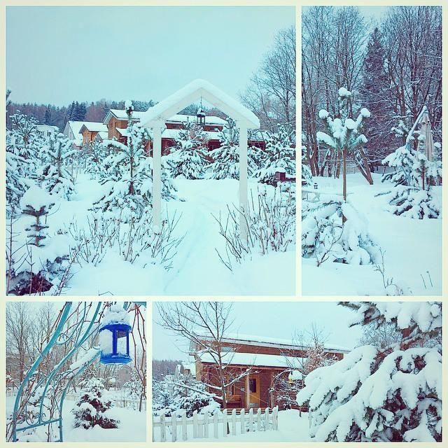 Красивая зима в Скоковопарк