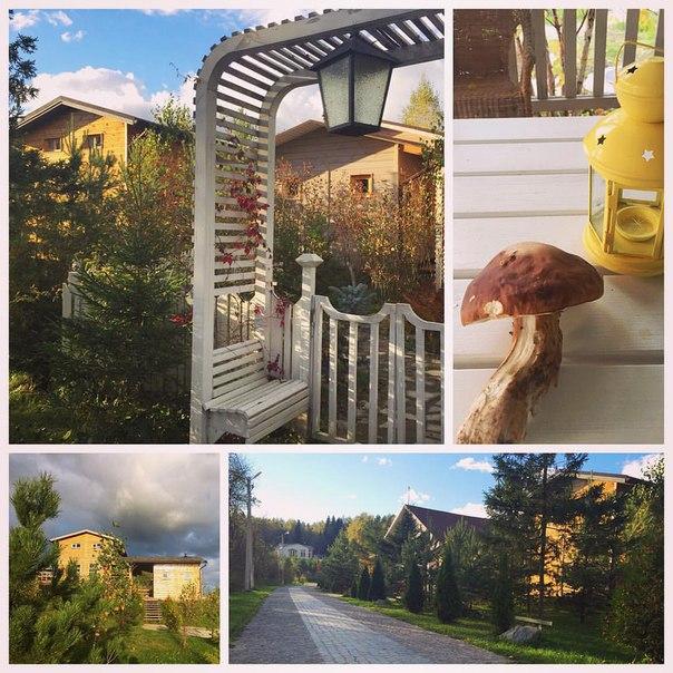 В нашем поселке осенью просто прекрасно! Солнце, свежий воздух, экология и урожай грибов))