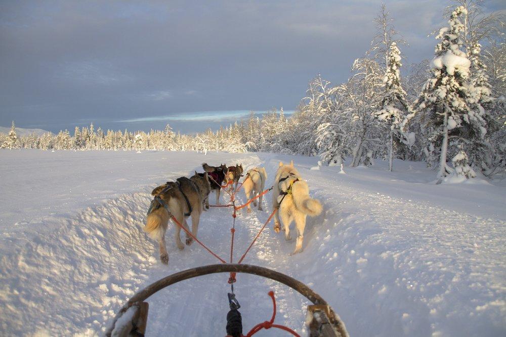 finland-2215334_1920.jpg