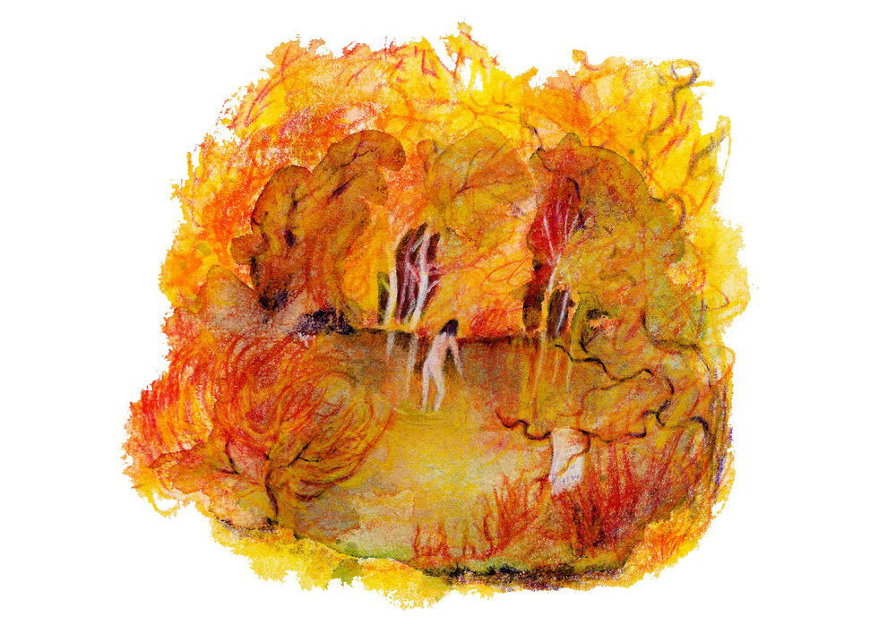 An autumnal dartmoor dip.jpg