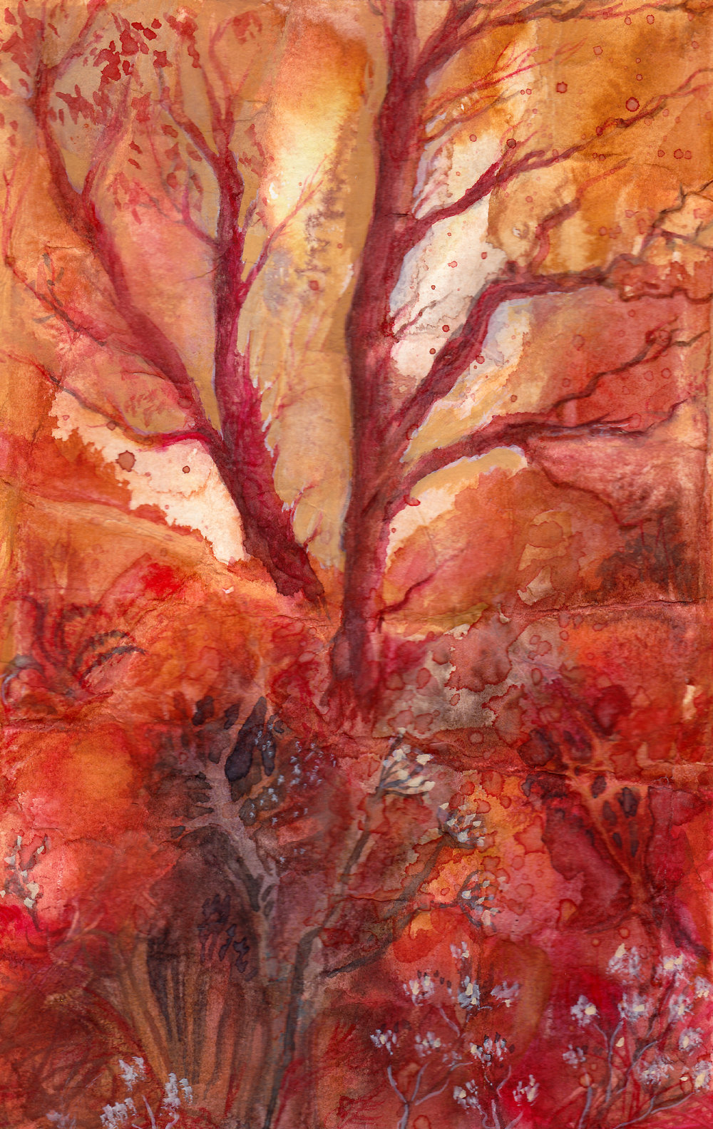 autumn tree.jpg
