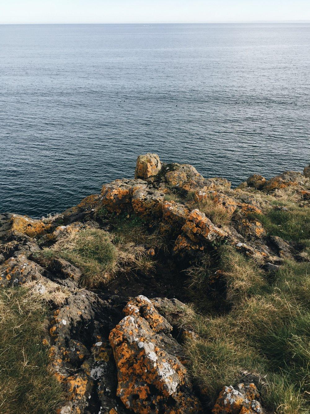 Coastline at Arnarstapi