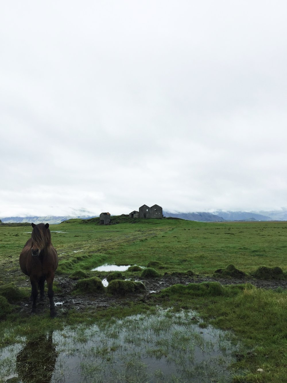 Copy of Abandoned farm, Southeast Iceland