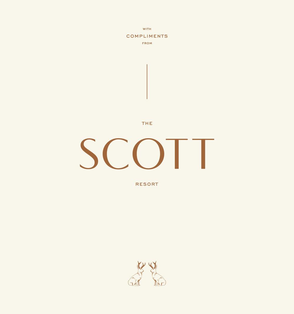 TheScott_Portfolio-04.jpg