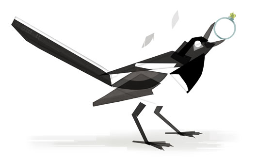 magpie-illustration.jpg