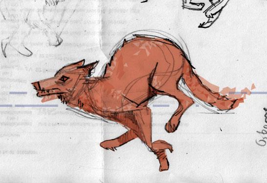Orange Wolf Sketch.jpg