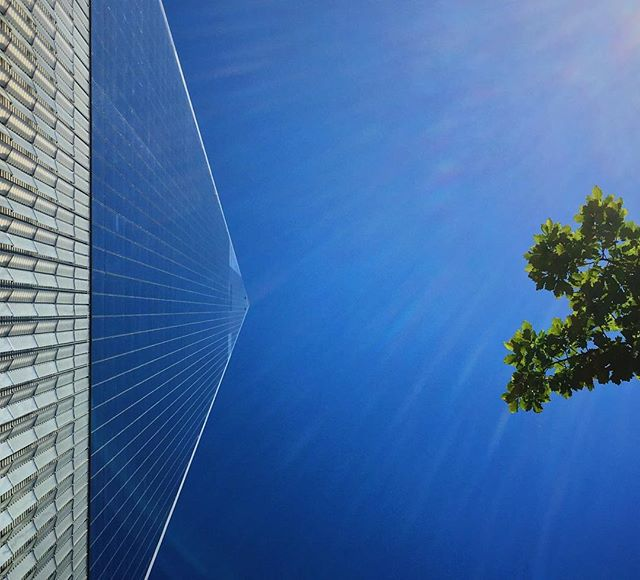 Look up! 🙄 . . . . . . . . . . . . . . . #nyc #lookup #wtc #reflection #bluesky #nycexplorers