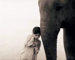A gentle hand may lead even an elephant by a hair. ~ Iranian proverb  Photograph by Gregory Colbert   I have found that people's psyches and bodies respond well to gentleness. A gentle message for today ~ you are lovely just the way you are. Relax. Or not ;-)