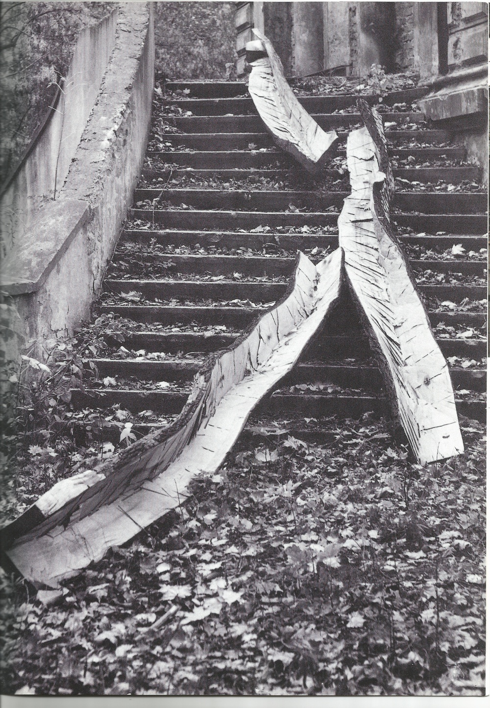 "Maple Cascade, 1993, 14 feet long, 14 feet long, 12 feet long, maple wood. Featured in ""Construction in Process IV – My Home is Your Home"" outside Grohman Palace, Lodz, Poland in 1993. Photograph by Leszek Czolnowski."