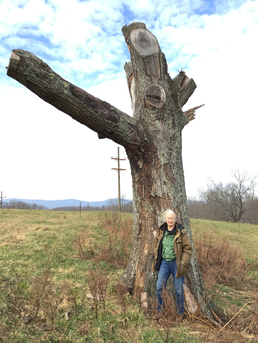 "Standing with the ""armed"" tree."