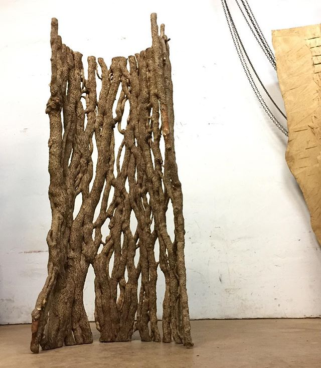 "My ""Ivy Web"" stands strong. Got it from a neighbor down the road. Aren't the vines incredible? I peeled these carefully from an ancient oak! #NatureasArt #Sculpture #Nature #Vines #ivy"