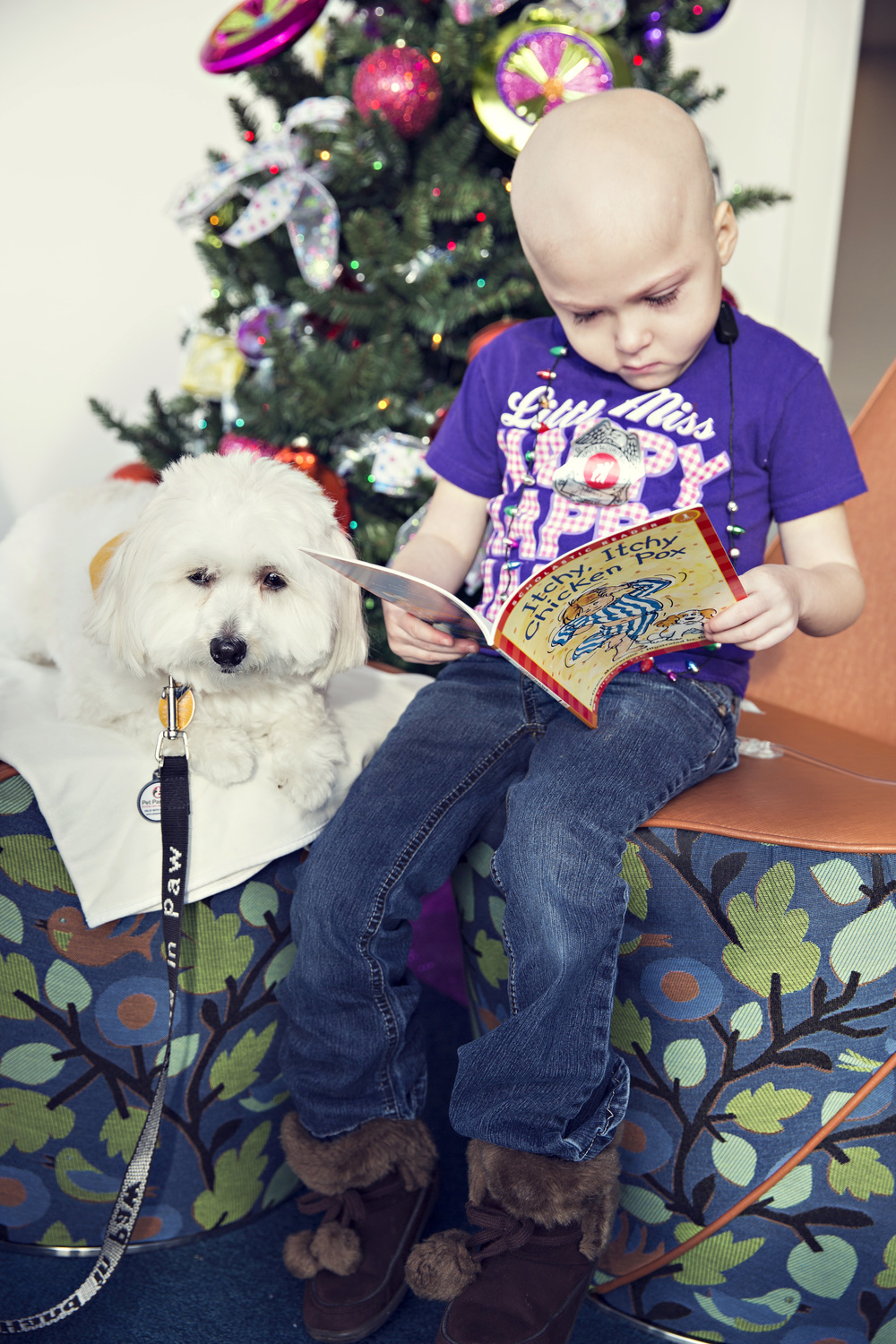 Teams go to Children's Hospital and read with the children. These kids light up when they see the Hand in Paw teams walking down the hall!  This is Buddy, he loves sweet kids and being read to!