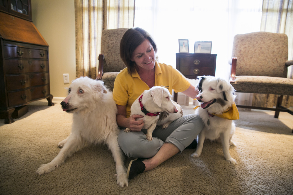 This is Melannie and her therapy dog Gracie (far right) and two of her other sweet pups. Melannie and Gracie are an amazing team. Gracie is actually blind and deaf, Melannie uses touch and signs for commands. Mike (far left) was Melannie's first therapy dog, he is deaf but is also trained to know sign language. Melannie and her family love these amazing dogs so much and were able to give them a home when they normally would not have been given that chance. Now these dogs are giving back by sharing their love as Hand in Paw therapy teams.